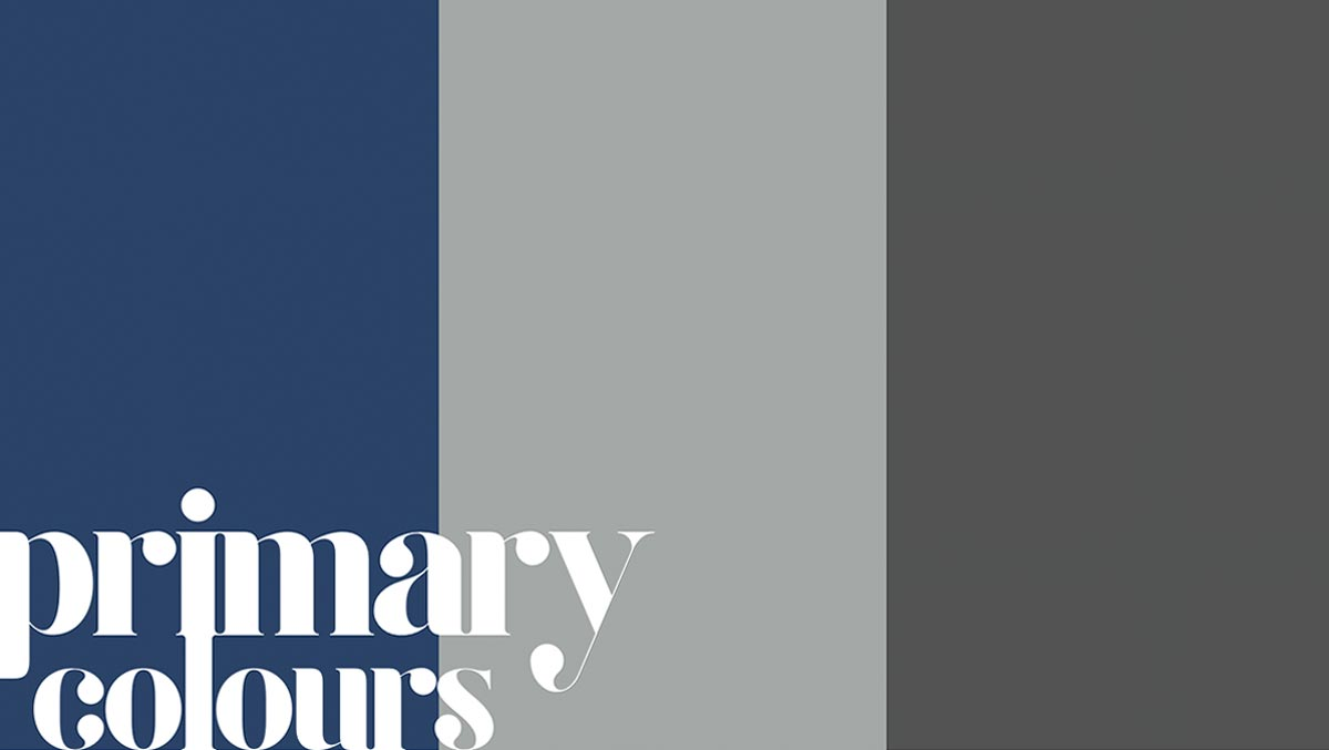 TechIndia Primary Colours